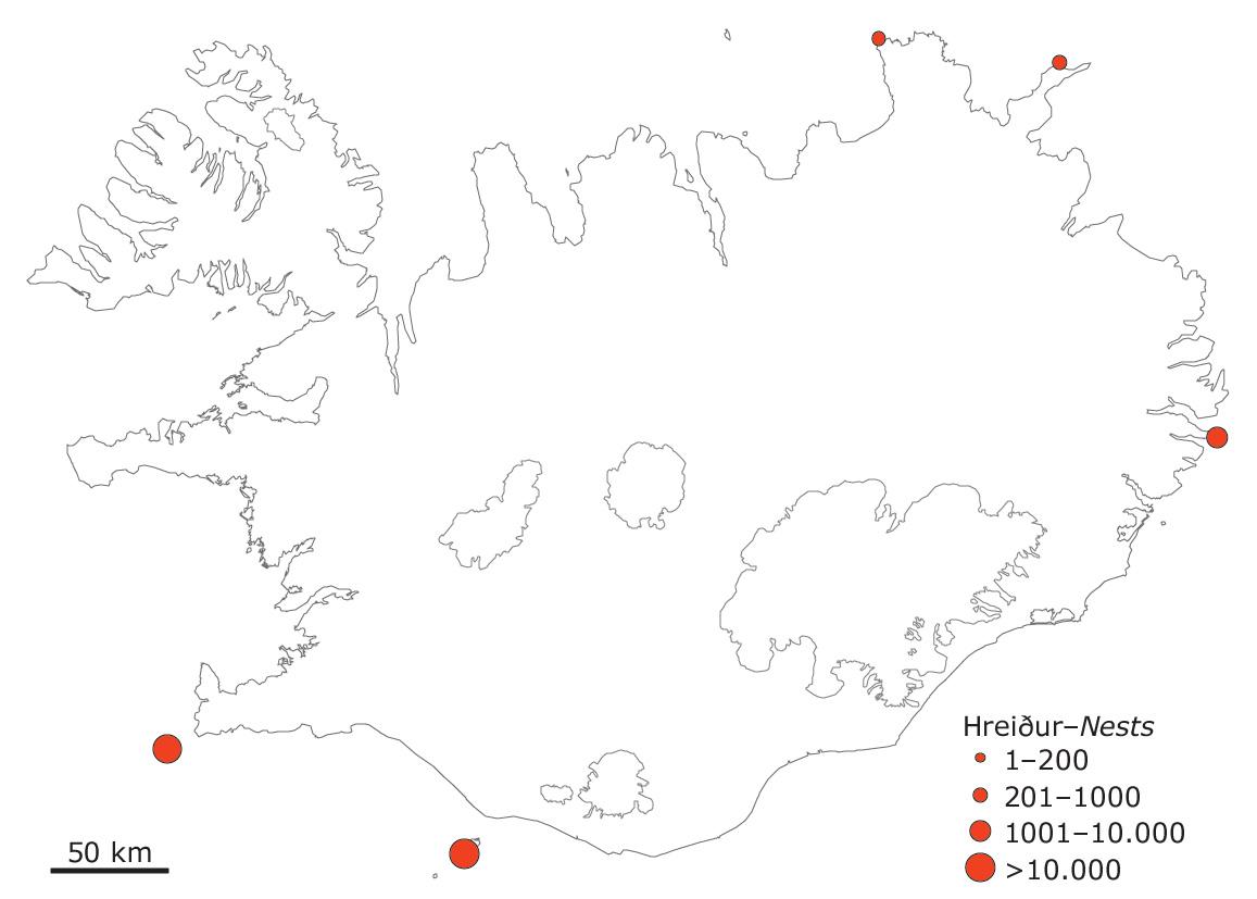Súluvörp á Íslandi