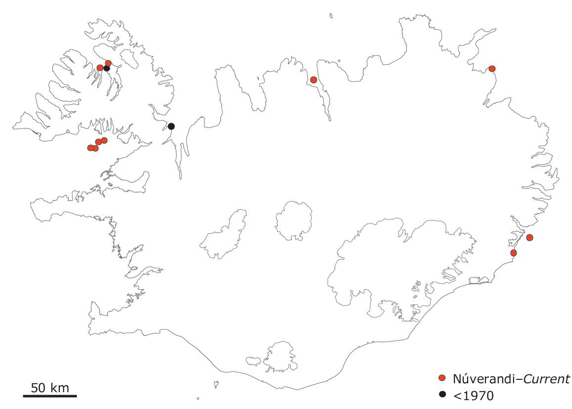 Stórar teistubyggðir (>100 pör) á Íslandi